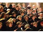 Der Oratorienchor Würzburg geht künftig eigene Wege. Foto: Dietmar Hetterich